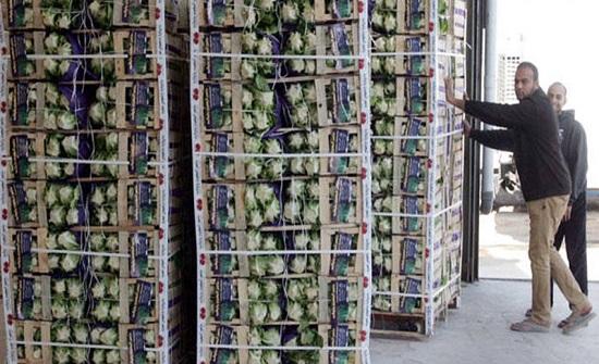 تصدير 3300 طن خضار وفواكه في يوم واحد