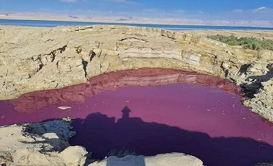 شاهد :المياه ترسل فرقا فنية لفحص بركة حمراء في البحر الميت