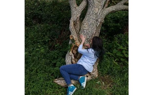 شاهد.. تتزوج من شجرة وتطلب شئ غريب بعد مرور عام