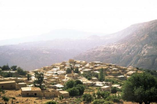 تنفيذ حملة بيئية في قرية ضانا