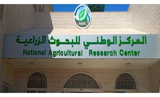 الوطني للبحوث الزراعية يشارك بورشة دولية للاستزراع السمكي