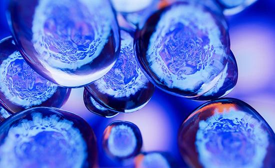 """ابتكار خلايا """"غير مرئية"""" تتخطى جهاز المناعة"""