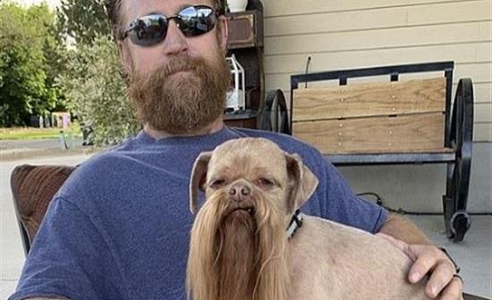 بعد 8 سنوات من العشرة.. كلب يشبه صاحبه ويصبح موديل إعلانات
