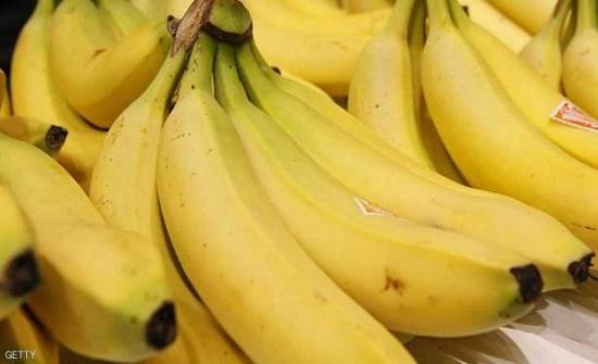 تجار اربد: الموز المحلي لا يغطي احتياجات السوق والاستيراد موقوف