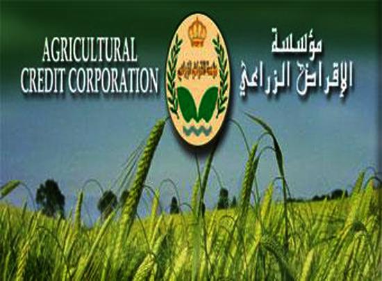 الإقراض الزراعي: حزمة مشاريع زراعية بقيمة 35 مليون دينار دون فوائد
