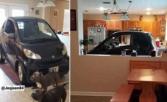 شاهدوا.. شخص يضع سيارته داخل مطبخ منزله ويثير الجدل