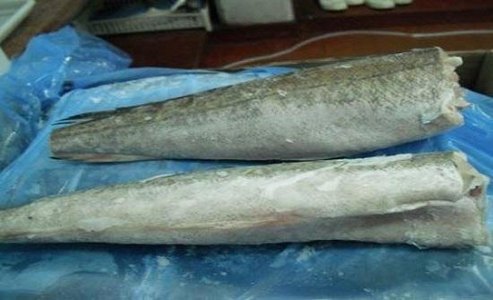 الغذاء والدواء توضح دورها الرقابي بموضوعي فيليه السمك والسمك المقطوع راسه