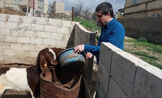 مشاريع التنمية الريفية تساهم بحل مشكلتي الفقر والبطالة في إربد