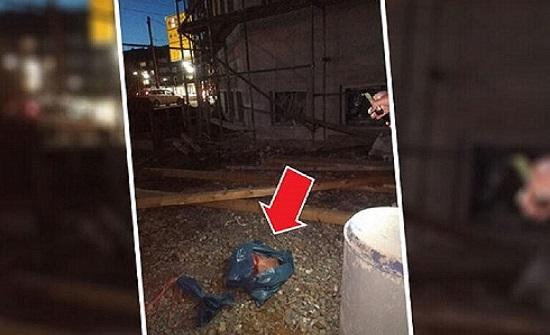 """مجهولون يضعون """"رأس خنزير"""" عند موقع إنشاء مسجد في ألمانيا (صورة)"""