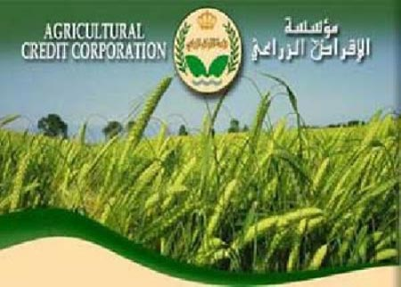 مزارعو وادي الاردن يثمنون قرار تأجيل أقساط الاقراض الزراعي