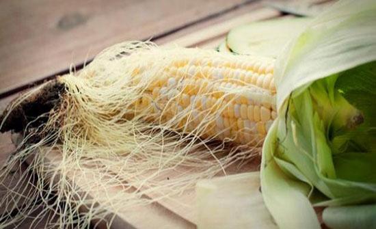 لشعر الذرة فوائد عديدة منها علاج مشاكل الكلى..فيديو