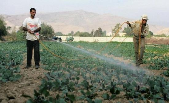 الإقراض الزراعي يؤجل أقساط المقترضين لشهرين