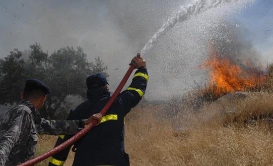 الدفاع المدني يخمد حريق أعشاب جافة في محافظة اربد