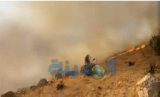 حريق ضخم على طريق عمان جرش .. شاهد