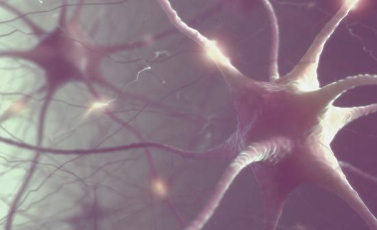 العلماء يحققون اختراقا مذهلا في مجال قراءة الدماغ