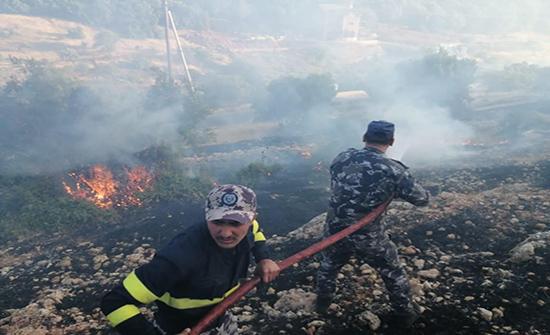 اخماد حريق ضخم في عين الباشا .. صور