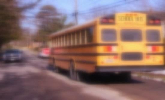 شاهدوا.. فتاة دفعت رجلا مسنا من حافلة من دون رحمة وقتلته