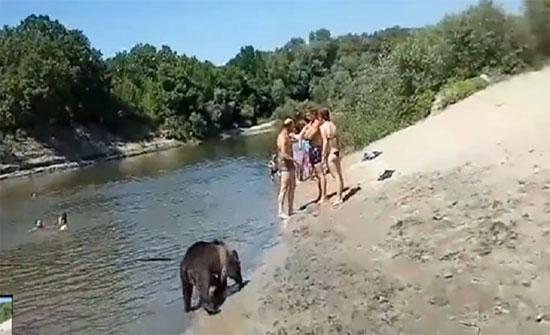 """سيدة تسبح مع """"دبها الأليف"""" بمياه نهر في روسيا (فيديو)"""