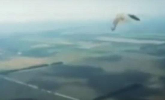 عصفور يصطدم بزجاج قمرة القيادة أثناء رحلة طيران