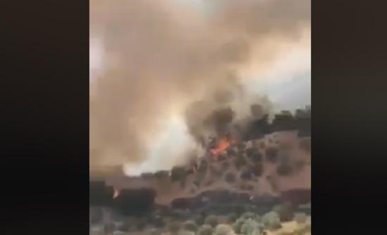 فيديو  :  حريق كبير في احراج عجلون