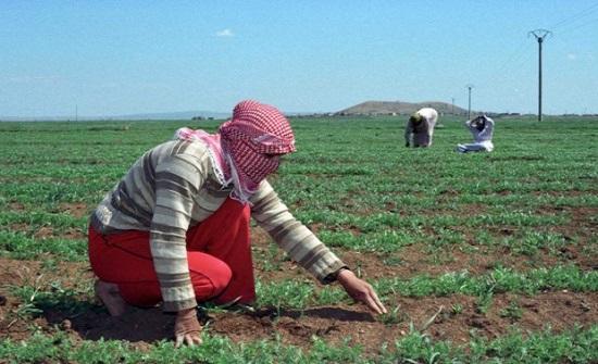 153 ألف تصريح عمل لسوريين في الأردن منذ 2016
