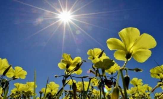 الثلاثاء : طقس ربيعي دافئ