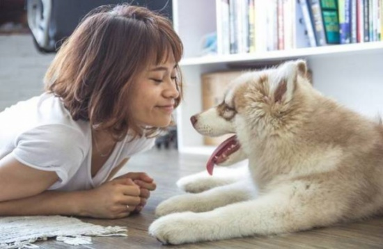 بالفيديو.. كلب يبكي ويذرف الدموع بسبب توبيخ صاحبته!