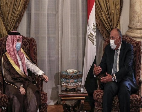 """السعودية ومصر تدعوان إلى """"وقف فوري"""" لإطلاق النار في غزة"""