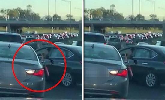 شاهد: مشاجرة عنيفة بين سيدتين على طريق سريع في شيكاغو