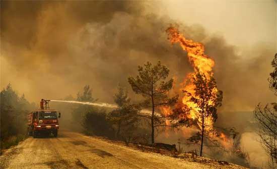 استمرار حرائق الغابات في تركيا والسلطات تخلي قرى بأكملها (فيديو)