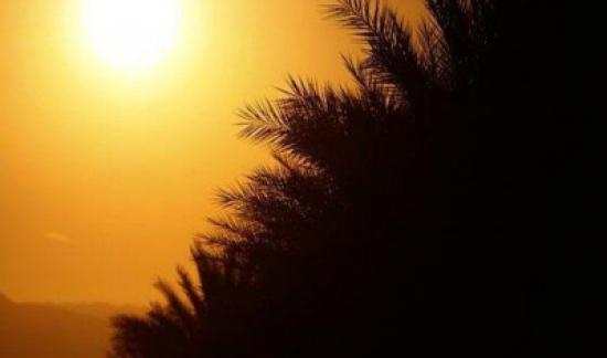 كُتلة هوائية حارّة تؤثر على المملكة حتى نهاية الأسبوع