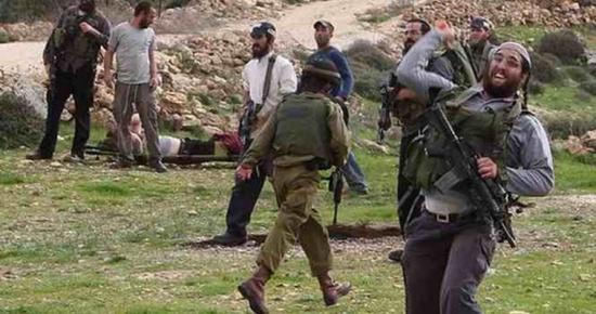 ستوطنون يعتدون على الفلسطينيين في نابلس ويصادرون اراضي بالاغوار الشمالية