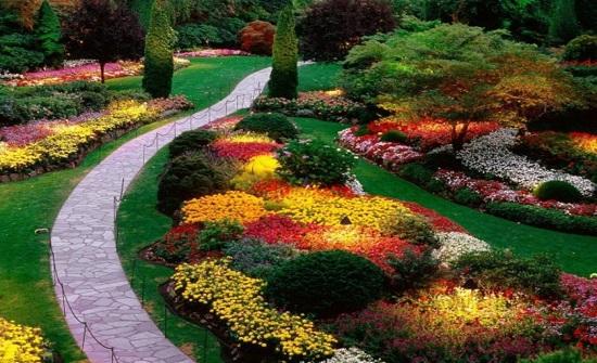 إربد: دورة حول تنسيق الحدائق العامة والمنزلية