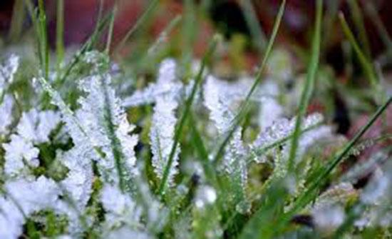 الخميس : الحرارة تلامس الصفر المئوي ليلا وتحذيرات من تشكل الصقيع