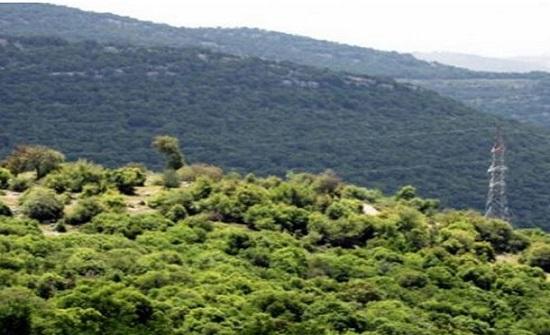 العثور على سائحين تائهين في غابات برقش