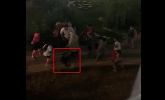 الخارجية: الفيديو المتداول بشأن الاعتداء على طفل بتركيا تبين انه اردني - شاهد