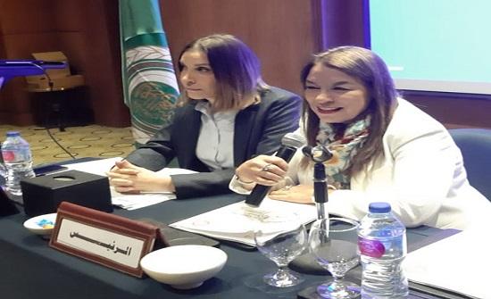 المجلس الأعلى للسكان يشارك بورشة في القاهرة