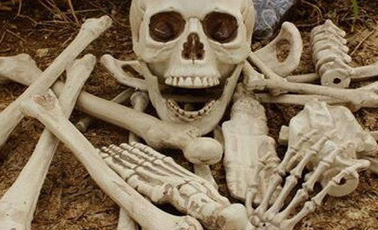 المانيا : العثور على عظام بشرية في أمتعة سيدة مسنة