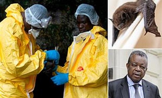 مكتشف إيبولا يحذر من ظهور فيروسات أشد فتكا من كورونا.. تفاصيل