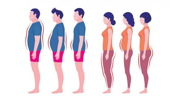 توزيع الشحوم في الجسم... تأثيرات مختلفة على أمراض الشرايين القلبية