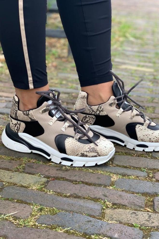 Toral sneakers tl-11101 bc - Toral