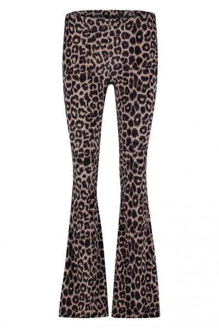 Catwalk junkie wild scene flare pants leopard