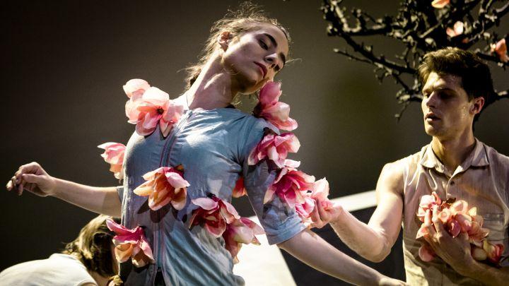 Happily ever after door Maas theater en dans — De Krakeling, theater voor de jeugd te Amsterdam