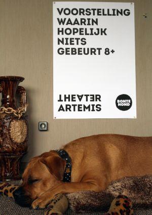 Voorstelling waarin hopelijk niets gebeurt door Theater Artemis / BonteHond