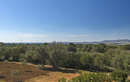 MODERN-FINCA-WITH-VIEWS-OF-PALMA-BAY_45.jpg