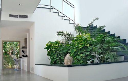 D-jardin_escalera_cocina.jpg