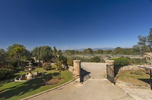 LARGE FINCA WITH OLIVE FIELDS AND STABLES