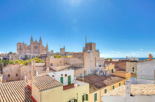 Spacious Patrician apartment in one of the best locations in Palma