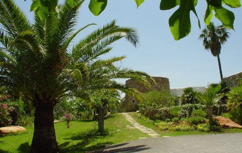torre_con_jardin_II.jpg