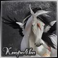 knopo4ka)